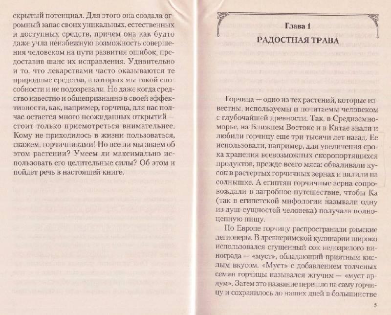 Иллюстрация 1 из 10 для Горчица. На страже здоровья - Иван Неумывакин | Лабиринт - книги. Источник: Рыженький