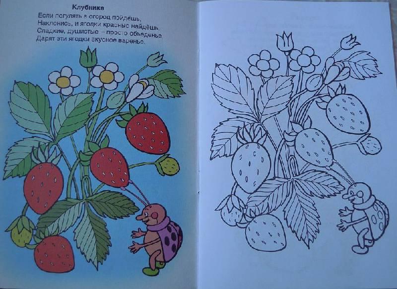 рисунок к песне во саду ли в огороде