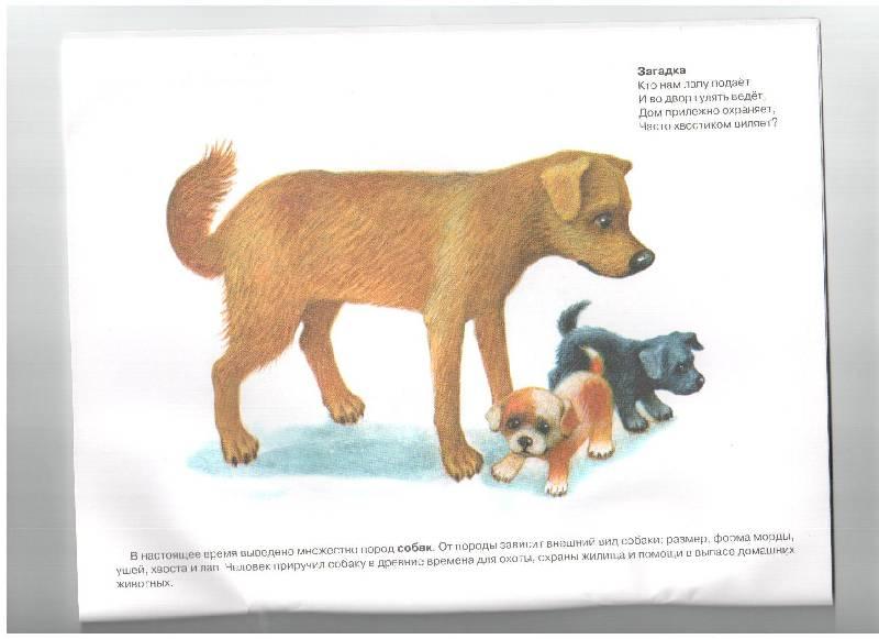 В деревне Книга для малышей с многоразовыми наклейками и