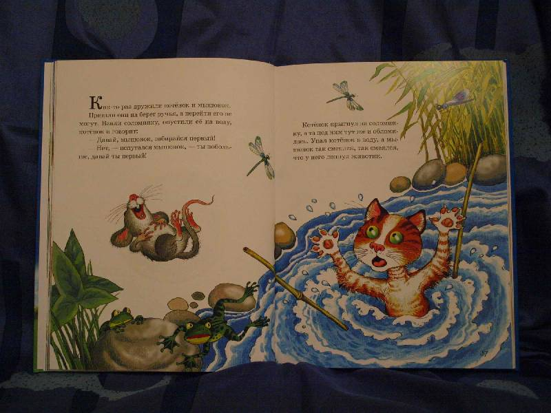 """Иллюстрация № 15 к книге """"Песенки и сказки веселых гномов"""", фотография, изображение, картинка"""