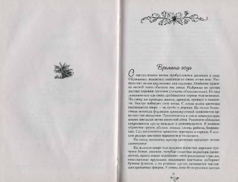 Иллюстрация 1 из 10 для Чудо-сад своими руками - Карлен Кочарян | Лабиринт - книги. Источник: Анна Викторовна