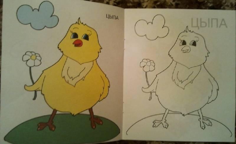 Раскраски детям от 3-х лет