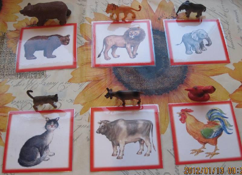 Книжка про животных своими руками 84