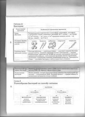 Источник. книги Биология в схемах и таблицах: 11 класс - Юрий Щербатых. следующая. из 9 для.