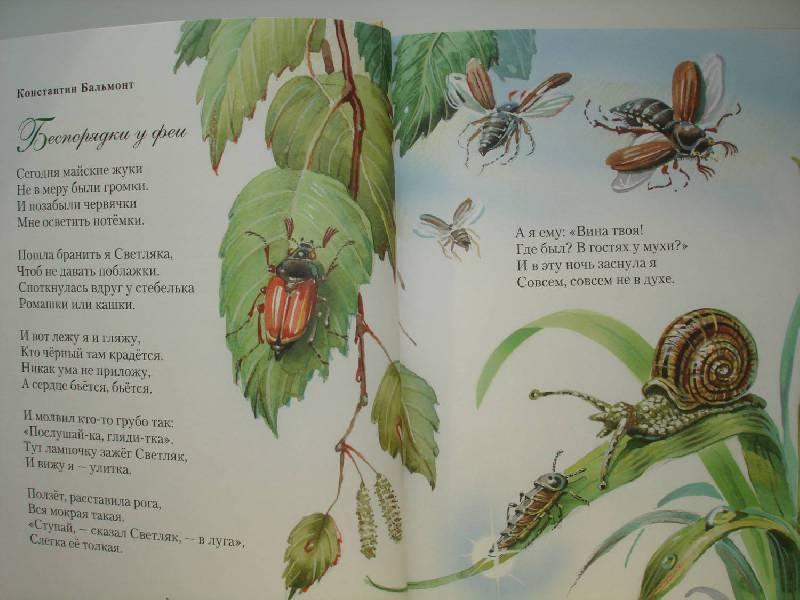 Года стихи русских поэтов о природе