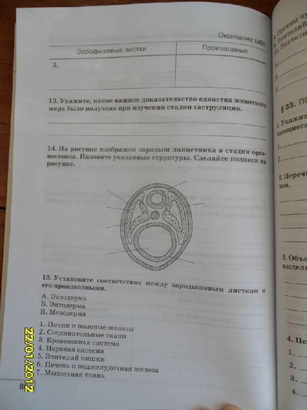 Седьмая иллюстрация к книге биология