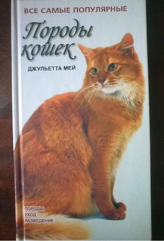 Иллюстрация 1 из 13 для Породы кошек - Джульетта Мей | Лабиринт - книги. Источник: н.в.а.