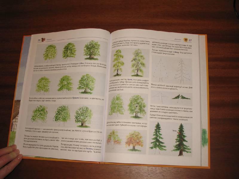 Иллюстрация 5 из 8 для мои первые уроки