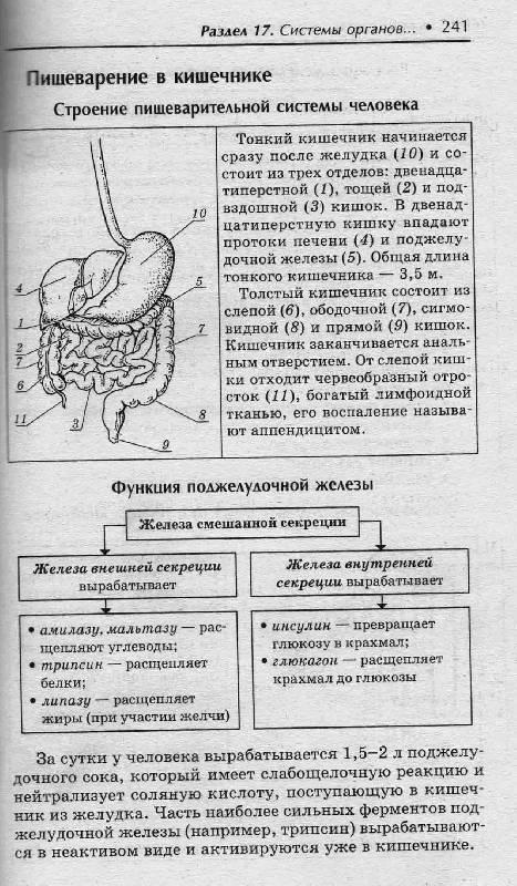 Мама Лины. книги Биология в схемах и таблицах: 11 класс - Юрий Щербатых. следующая. из 9 для.