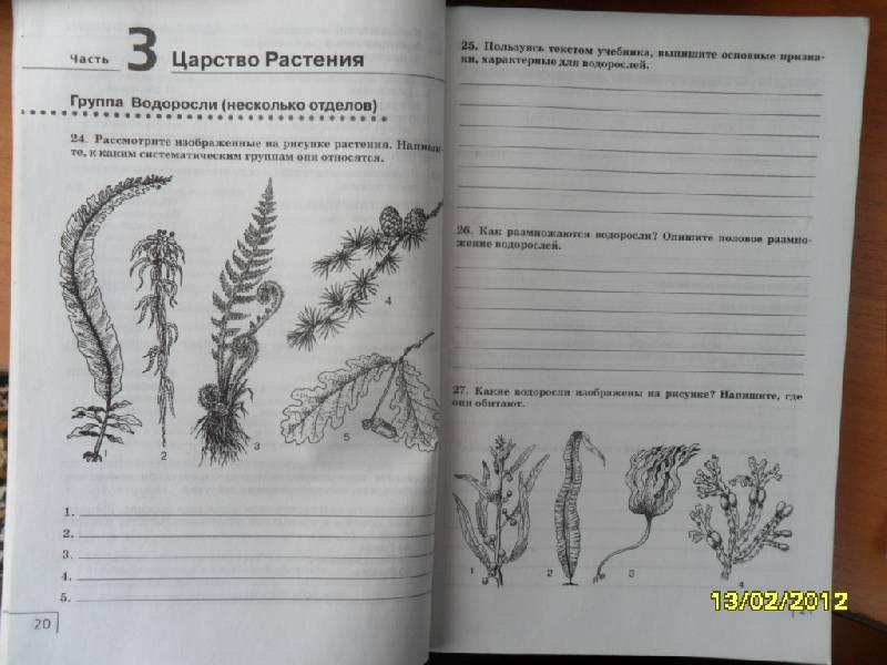 Организмов 7 класс рабочая тетрадь