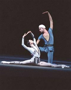 Иллюстрация 1 из 4 для Легенда о любви. Русский балет (DVD) - С. Фудзии | Лабиринт - видео. Источник: Степанова  Надежда Александровна