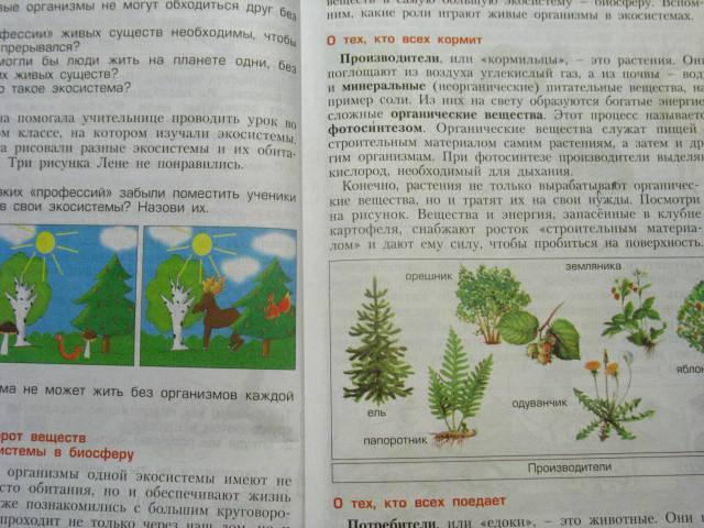 Гдз По Окружающему Миру 2 Класс 2 Часть Вахрушев Учебник Читать Онлайн