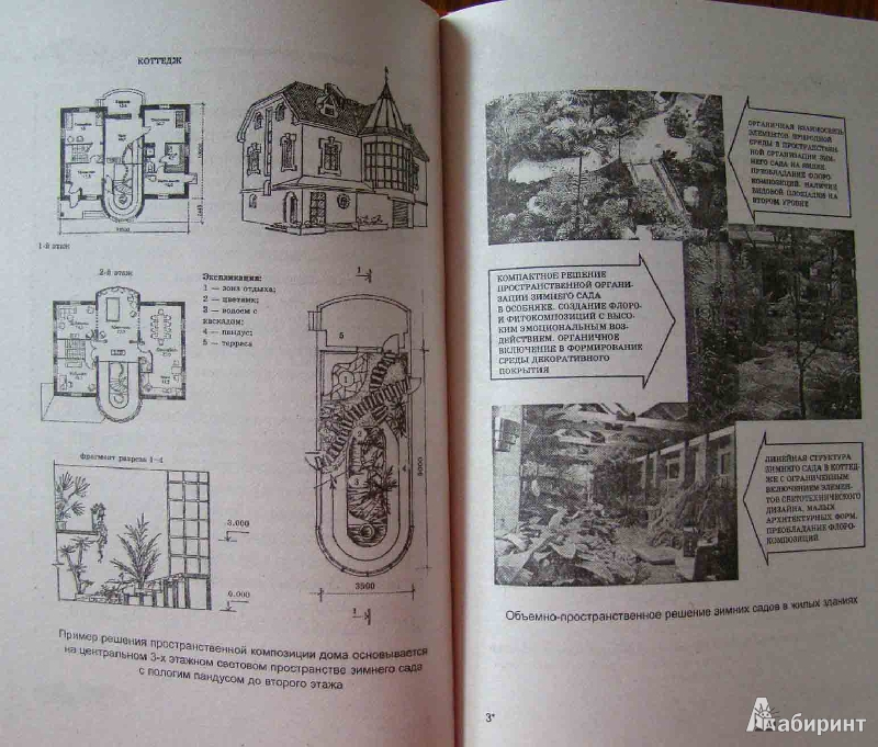 Иллюстрация 1 из 6 для Выращиваем зимний сад. Это просто! - Нелли Крижановская | Лабиринт - книги. Источник: Easy