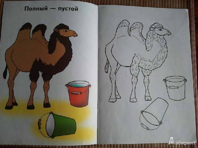 Иллюстрация 1 из 3 для Большой и маленький | Лабиринт - книги. Источник: urri23