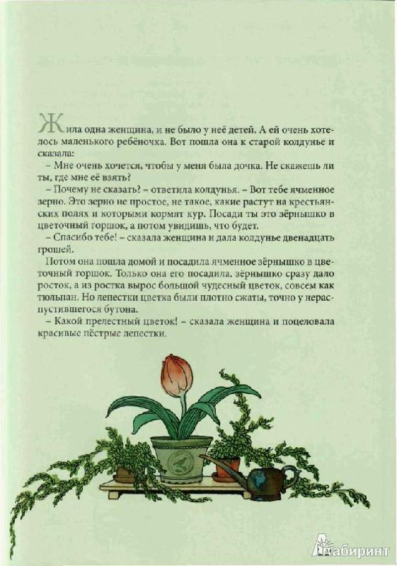 Иллюстрация № 17 к книге