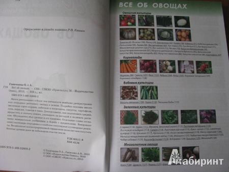 Иллюстрация 1 из 8 для Все об овощах - Октябрина Ганичкина   Лабиринт - книги. Источник: Рашина  Марина Юрьевна