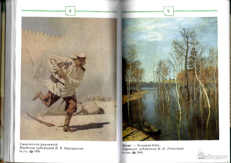Иллюстрация 5 из 18 для русский язык 9