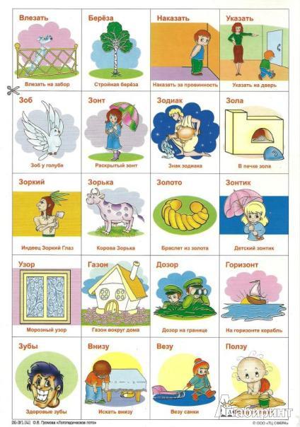 Список тенелюбивых комнатных растений с фото и названиями