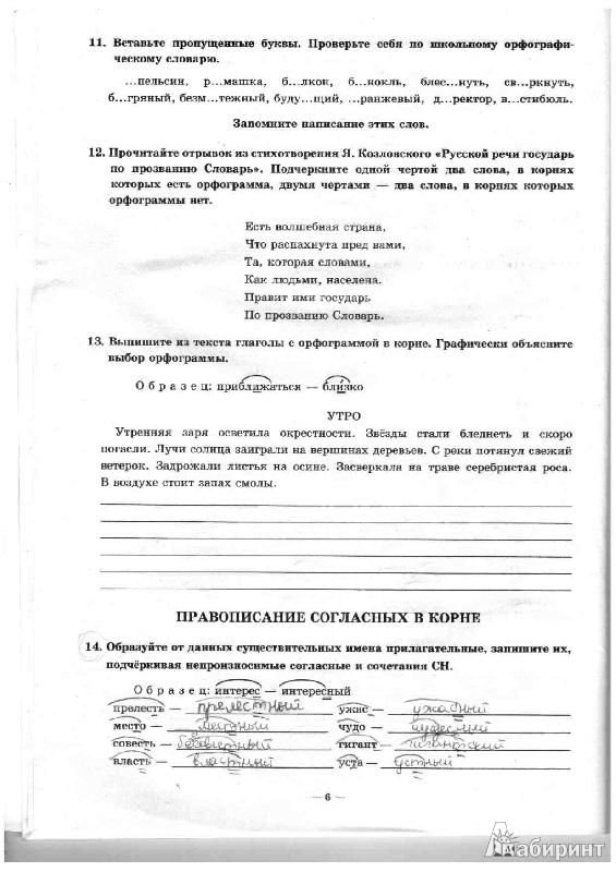 Рабочая Тетрадь Русский Язык 5 Класс Ладыженская