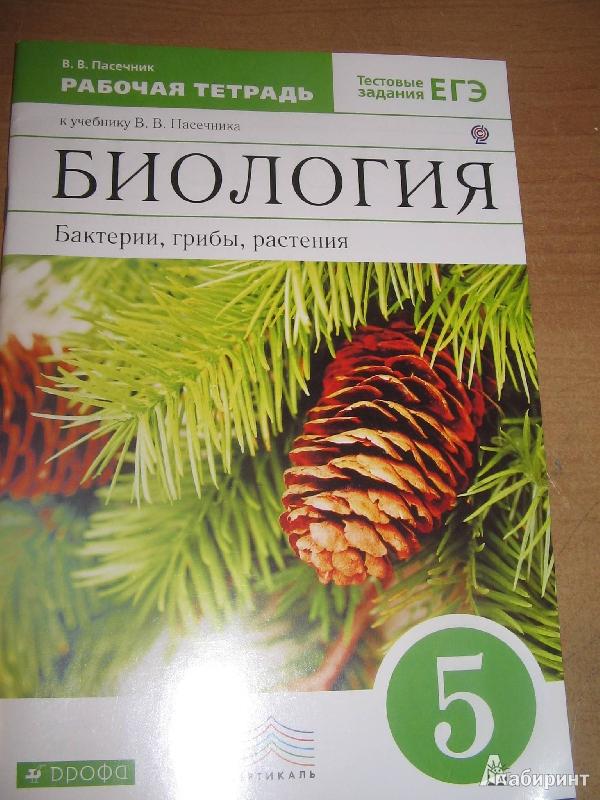 Биология бактерии грибы растения 5