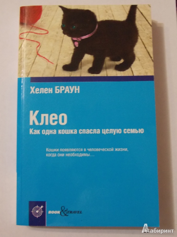 Иллюстрация 1 из 32 для Клео. Как одна кошка спасла целую семью - Хелен Браун   Лабиринт - книги. Источник: Mrafoglov