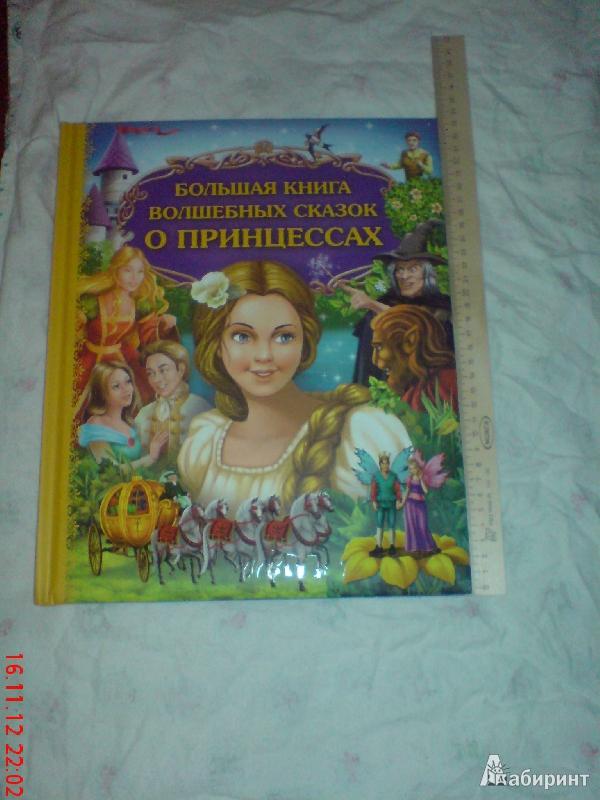 Иллюстрация 1 из 23 для Большая книга волшебных сказок о принцессах | Лабиринт - книги. Источник: Любовь Савичева