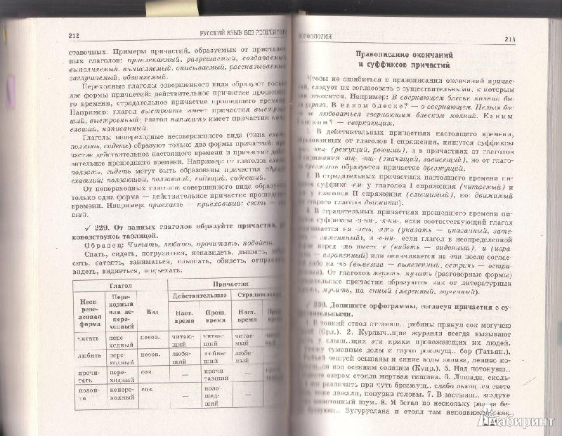 Русский язык 2011