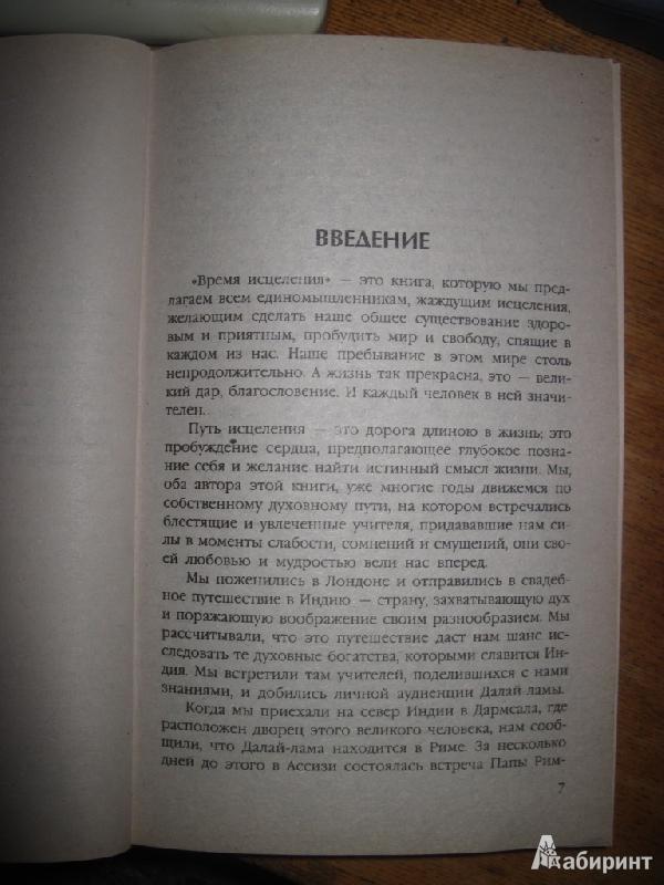 Иллюстрация 1 из 6 для Время исцеления - Шапиро, Шапиро   Лабиринт - книги. Источник: товарищ маузер