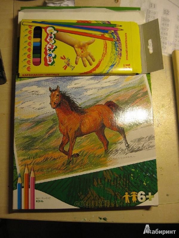 Иллюстрация 1 из 3 для Раскраска цветными карандашами: Конь (Рн017)   Лабиринт - игрушки. Источник: hatams  Ирина
