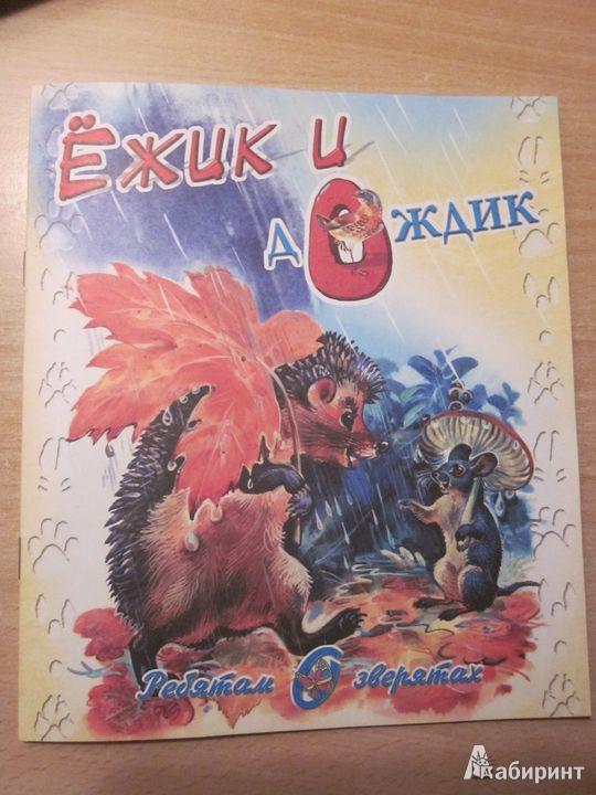Иллюстрация 1 из 9 для Ёжик и дождик - В. Степанов | Лабиринт - книги. Источник: Мeдвeдицa