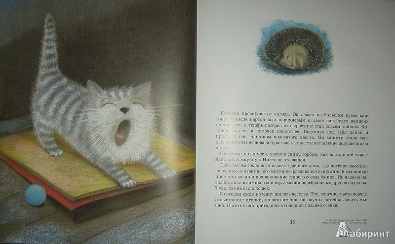 Иллюстрация № 14 к книге