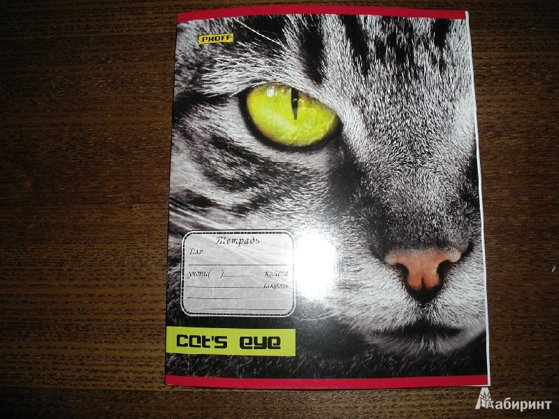 """Иллюстрация 1 из 3 для Тетрадь 24 листа """"Proff. Cat's eye"""" линия (6245121026)   Лабиринт - канцтовы. Источник: Tiger."""