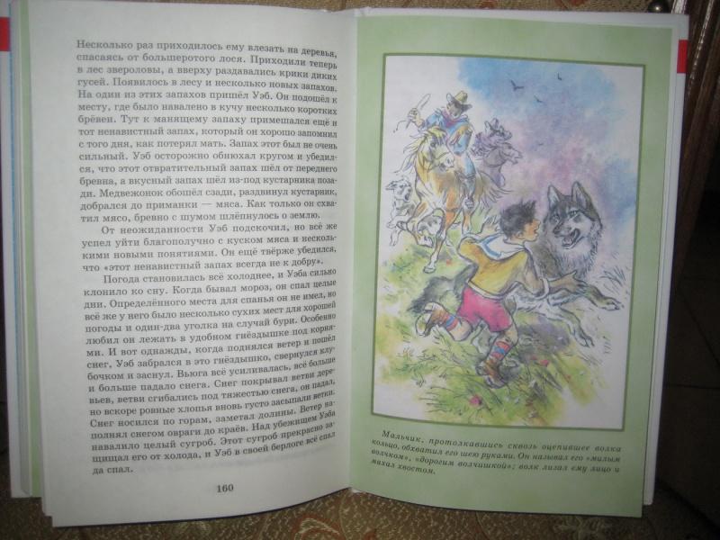 Иллюстрация 11 из 12 для книги мустанг