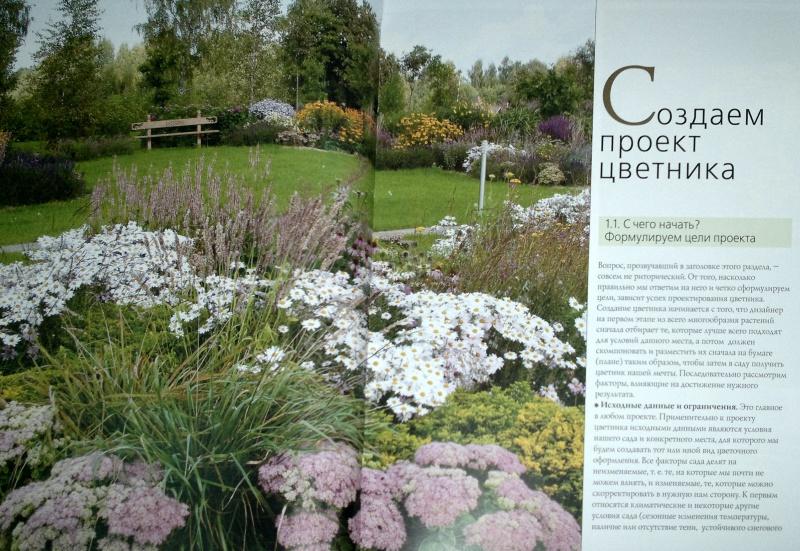 Фото цветников примеры проектирования дизайн