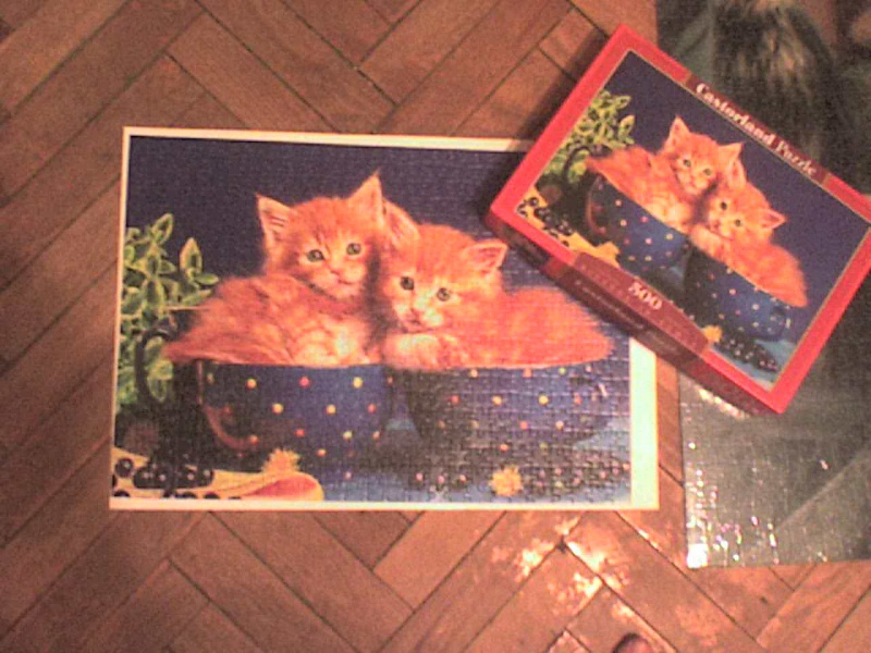 Иллюстрация 1 из 7 для Puzzle-500. Котята (В-51212)   Лабиринт - игрушки. Источник: Роза с шипами