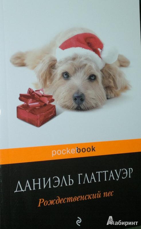 Иллюстрация 1 из 9 для Рождественский пес - Даниэль Глаттауэр | Лабиринт - книги. Источник: Леонид Сергеев