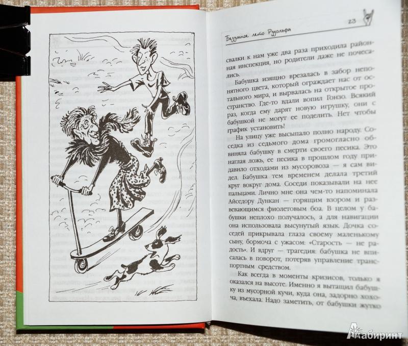 Иллюстрация 1 из 31 для Безумное лето Рудольфа - Иоанна Фабицкая   Лабиринт - книги. Источник: Mamulechka