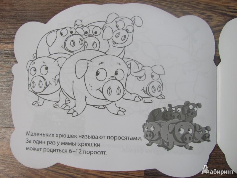 Раскраски с заданиями для детей 6 лет