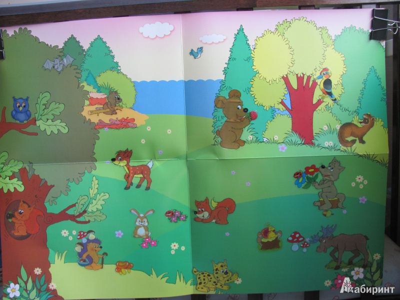 """Иллюстрация № 11 к книге """"Кто в лесу живет? Развивающий плакат-игра"""", фотография, изображение, картинка"""