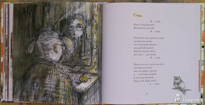 Иллюстрация 13 из 28 для Апельсинные корки - Мария Моравская Лабиринт - книги