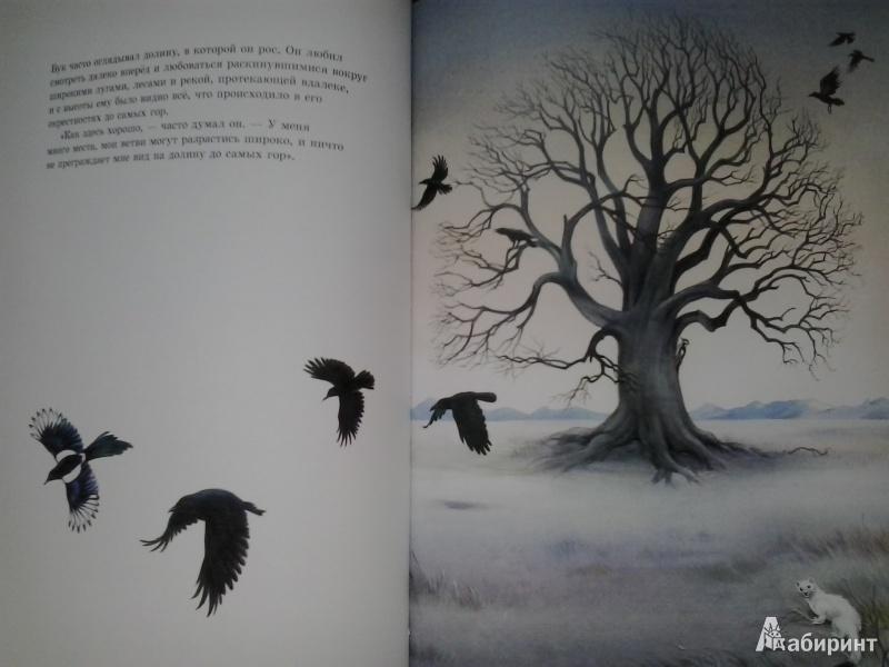 Иллюстрация 33 из 36 для книги маленькая
