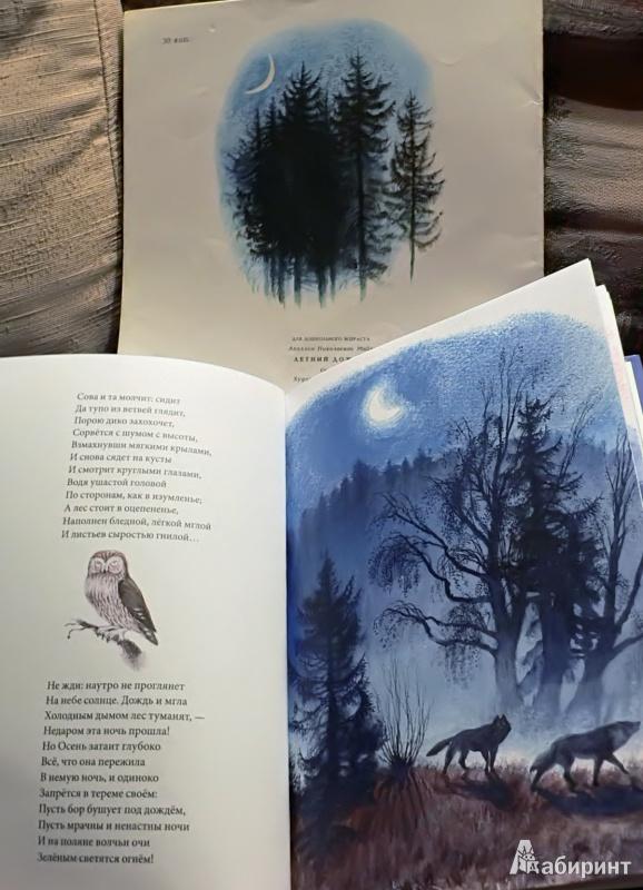 Вечер стихи русских поэтов о природе