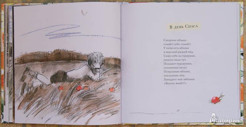 Иллюстрация 11 из 28 для Апельсинные корки - Мария Моравская Лабиринт - книги