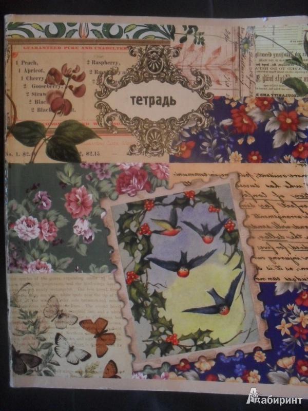 """Иллюстрация 1 из 4 для Тетрадь 48 листов """"КОЛЛАЖ"""" (22071)   Лабиринт - книги. Источник: Охотница"""