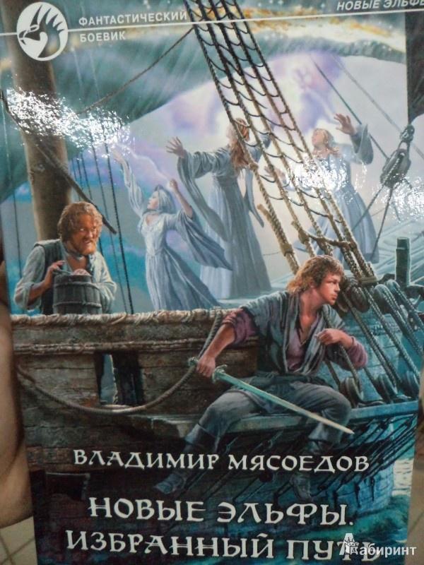 Иллюстрация 1 из 21 для Новые эльфы 4. Избранный путь - Владимир Мясоедов   Лабиринт - книги. Источник: Karfagen