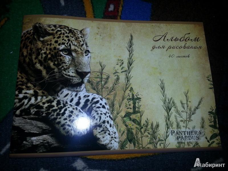 """Иллюстрация 1 из 3 для Альбом для рисования """"Леопард"""", 40 листов, А4 (29801)   Лабиринт - канцтовы. Источник: urri23"""
