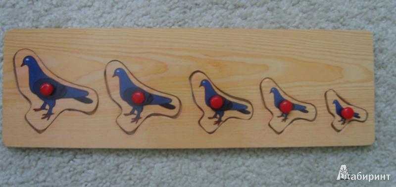 Иллюстрация 1 из 2 для Голуби   Лабиринт - игрушки. Источник: Ерохина  Алина