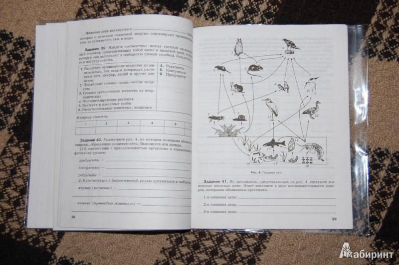 Для биология 9 класс рабочая тетрадь