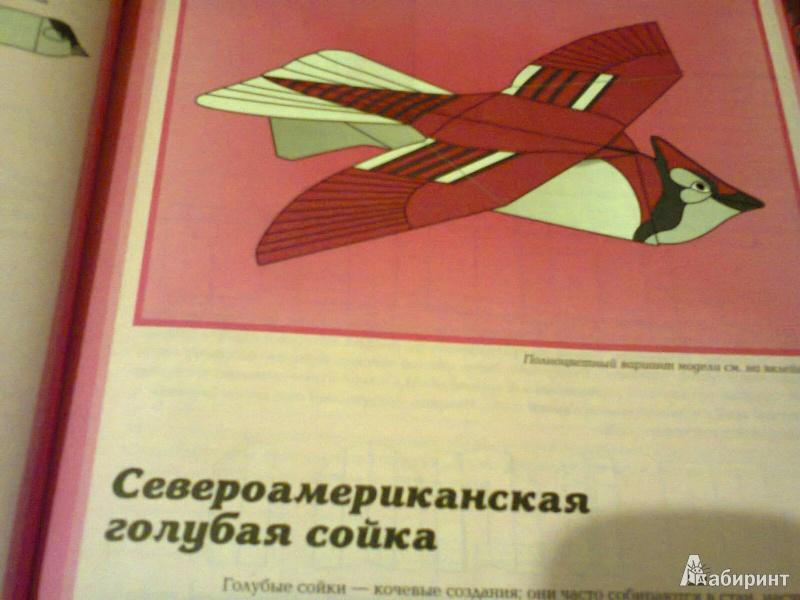 Иллюстрация 1 из 26 для Птицы из бумаги - Норман Шмидт   Лабиринт - книги. Источник: G