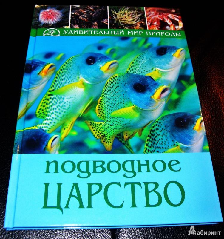 Иллюстрация 1 из 27 для Подводное царство - Хартманн, Белльманн, Янке | Лабиринт - книги. Источник: Очевидец